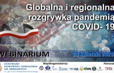 """28.04.2020 webinarium """"Globalna i regionalna rozgrywka pandemią COVID-19"""" z udziałem profesora dra hab. Piotra Mickiewicza, członka i eksperta PTG"""
